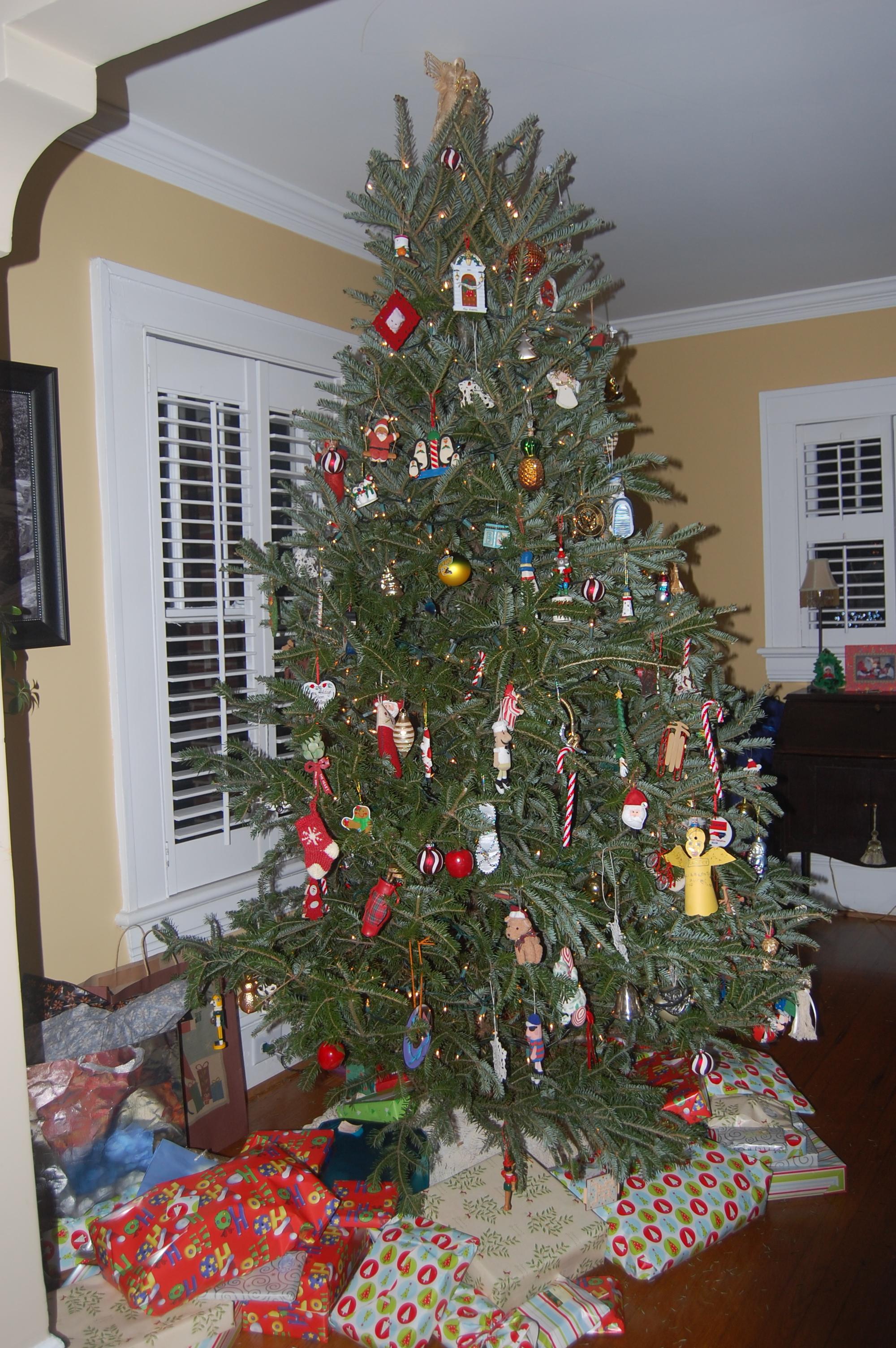 Christmas Decorating Intervention